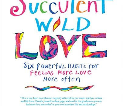 Succulent Wild like: Six effective practices for experiencing More Love More Of... - succulent wild love six powerful habits for feeling more love more of 405x350