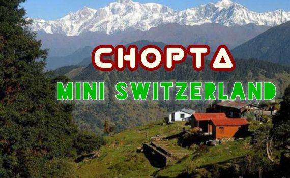 Best Place to visit in India || Chopta-Tungnath || Mini Switzerland