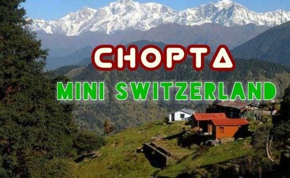 Best Place to visit in India || Chopta-Tungnath || Mini Switzerland