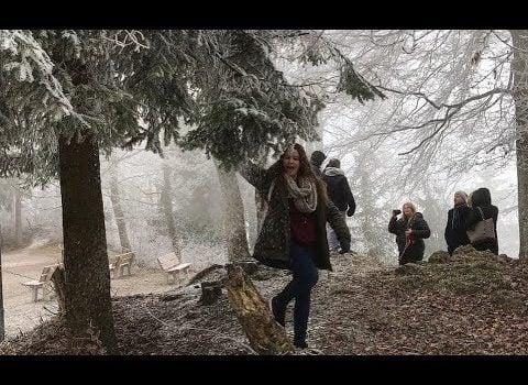 My trip to Switzerland December 2016/ January 2017