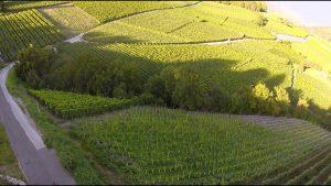 Valais Wine Trail - Savoring Switzerland