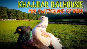 SwissOnlineDating.ch - The best dating site in Switzerland! - Khajjiar Mini Switzerland Of India I Dalhousie Tourist Places I 300x169