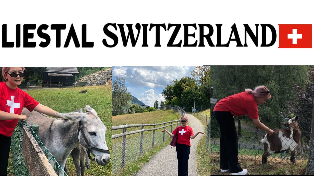 ANIMAL FARM OF SWITZERLAND ll HEAVEN ON EARTH ll LIESTAL ll TIERPARK l...