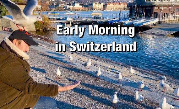 Early Morning Walk and Nature Therapy in Zürich, Switzerland  Feedin...