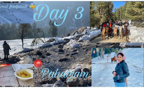Pahalgam , Kashmir    Day 3    Mini Switzerland    Kashmir Tour    Mus...