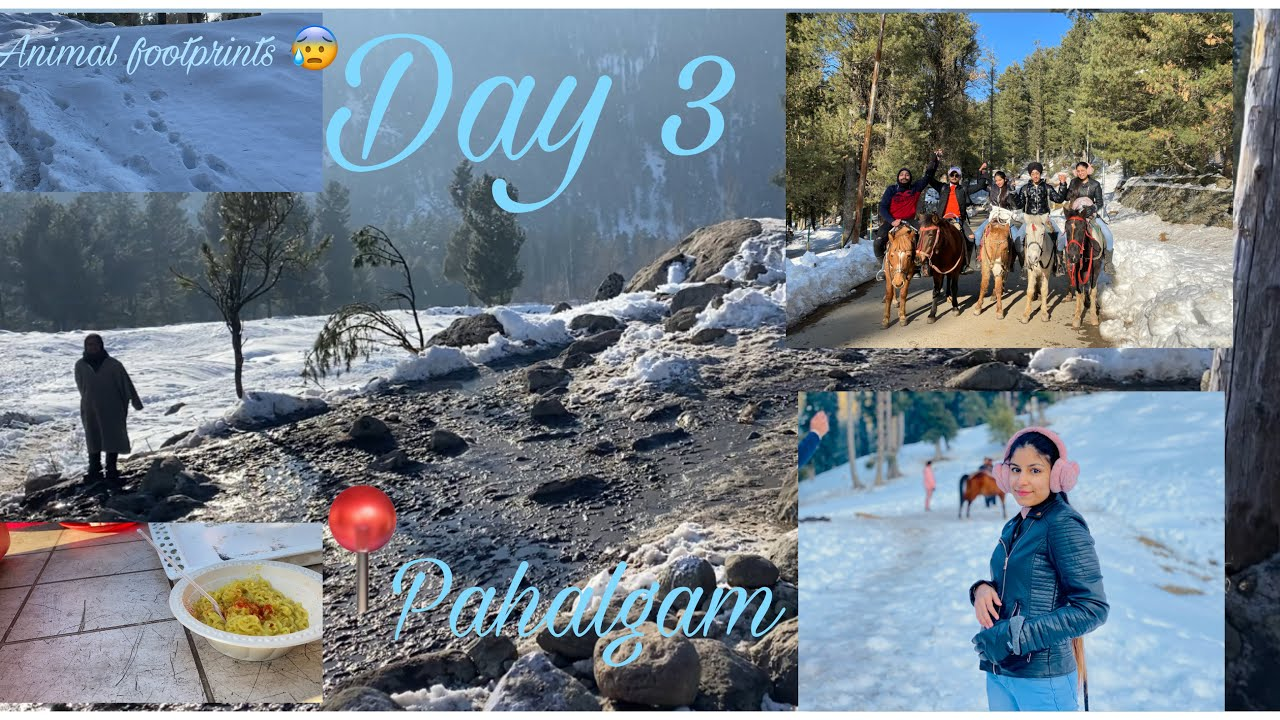 Pahalgam , Kashmir || Day 3 || Mini Switzerland || Kashmir Tour || Mus...