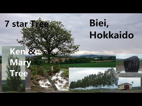 Japan   Hokkaido   Biei: - 10 of 20
