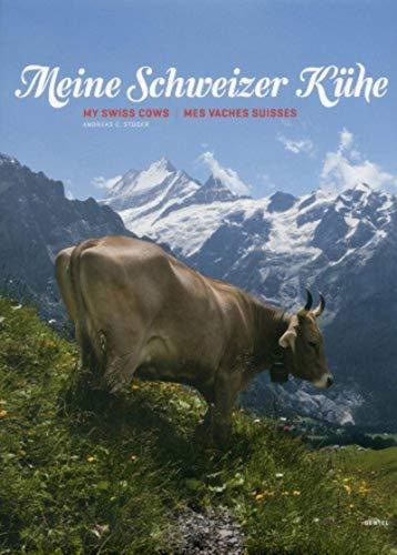 My cows that are swissBENTELI) - My Swiss Cows BENTELI